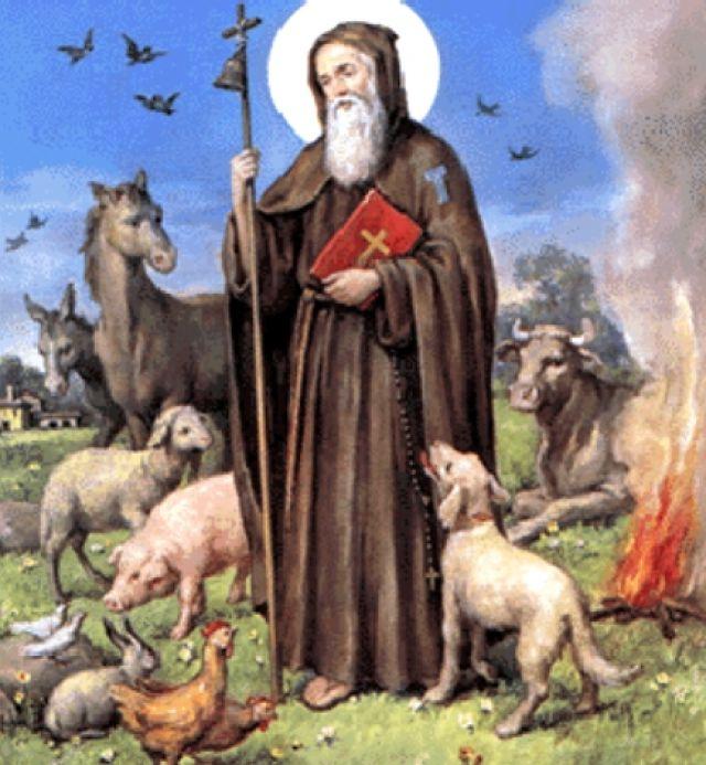 Storia cibi e riti di sant 39 antonio for Arredo bimbo sant antonio abate