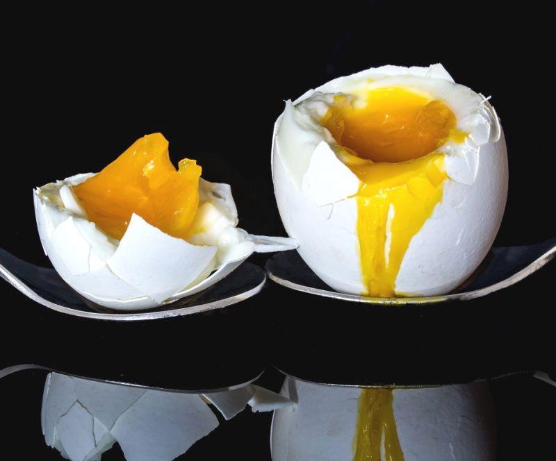 Gastrosofia mille modi di cucinare le uova for Cucinare 2 uova
